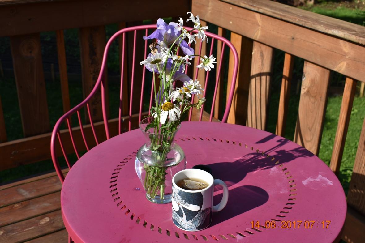 Anja Farin LLC flowers tea herbal tea herbs midwife midwives home birth