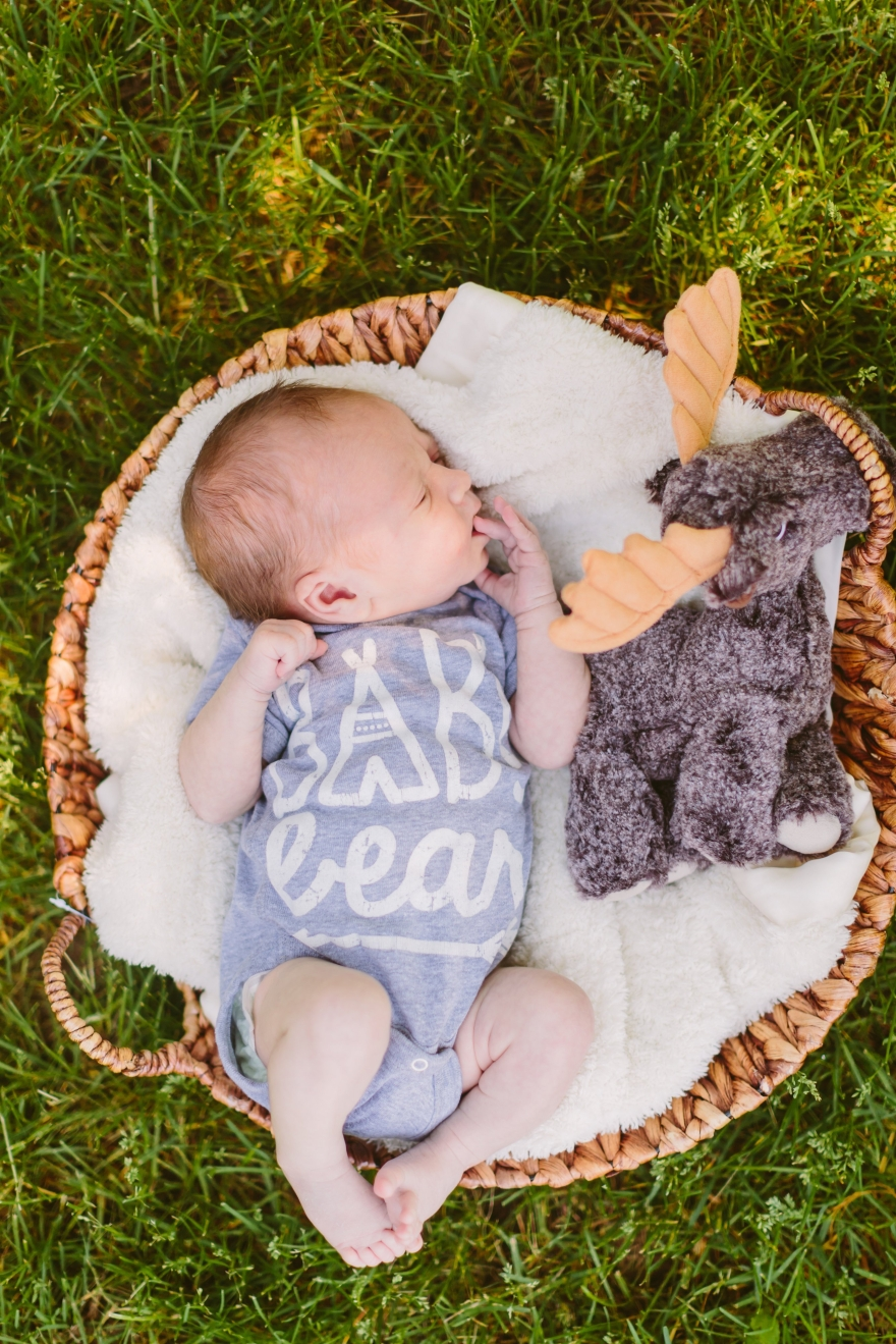 newborn home birth midwife midwives